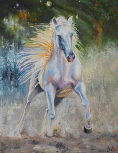 White galloping stallion