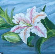 oil color artist